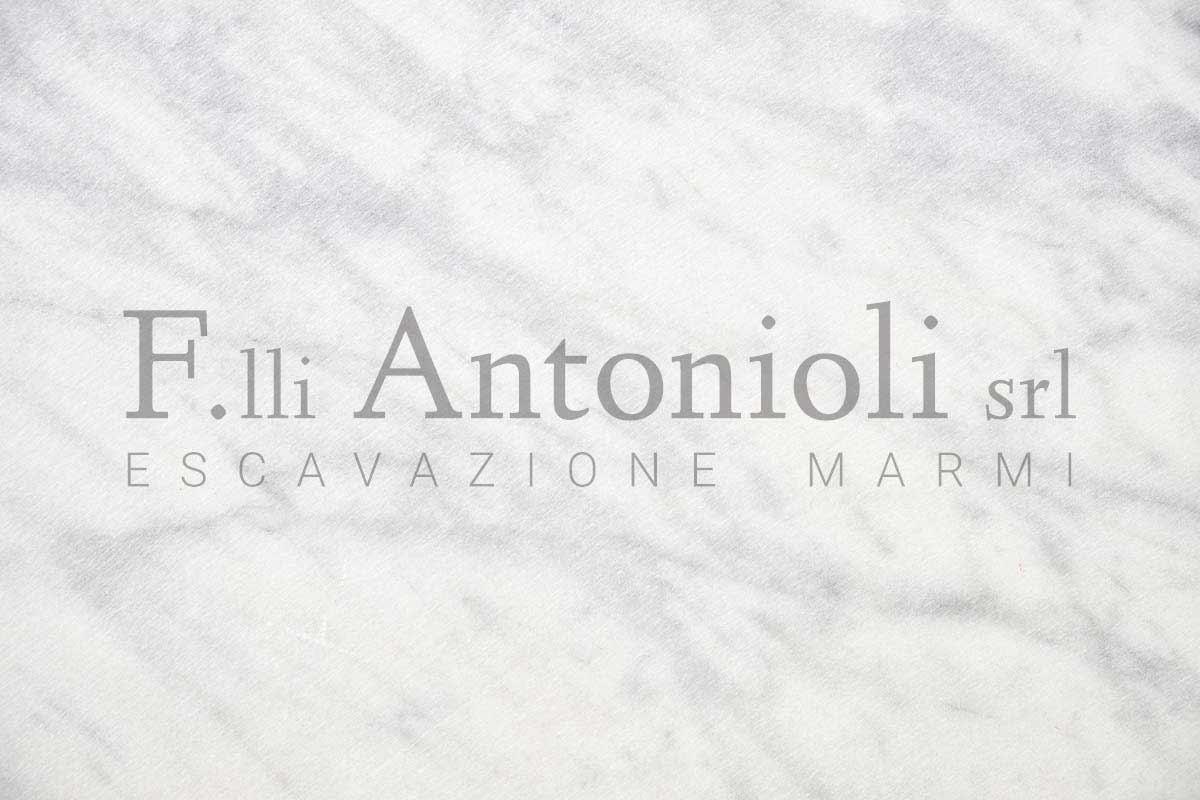 Nuovo sito web online - Blog F.lli Antonioli srl